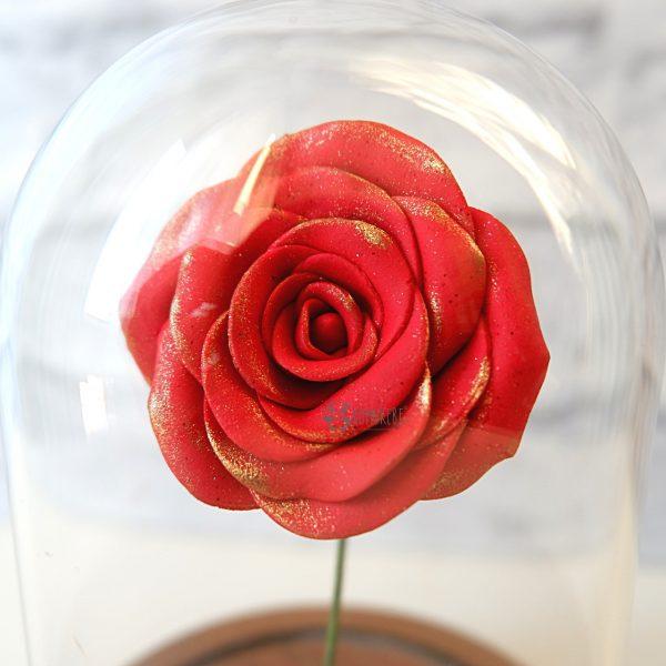 rosaincantata1